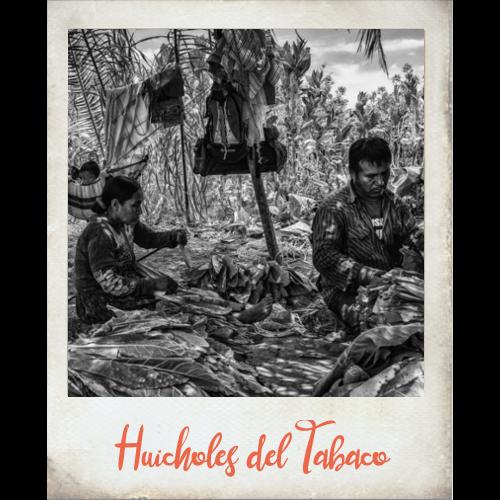 Huicholes del Tabaco